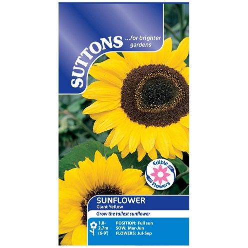 Suttons  Sunflower Giant Yellow Flower Seeds