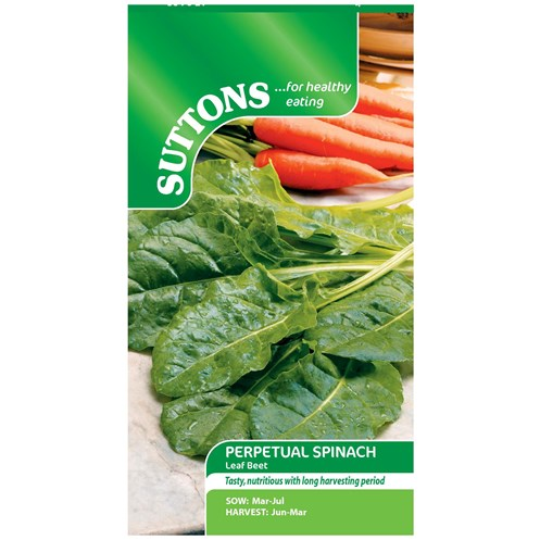 Suttons  Perpetual Spinach Leaf Beet Vegetable Seeds