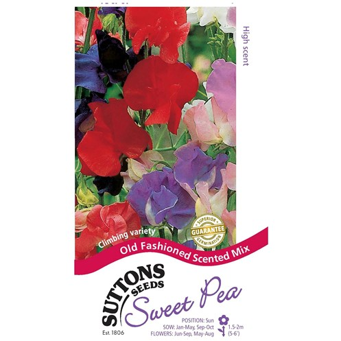 Suttons  Sweet Pea Old Fashioned Scent Flower Seeds